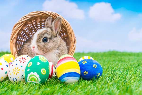 Easter Package Vila Lumbung Hotel Seminyak (seminyak)